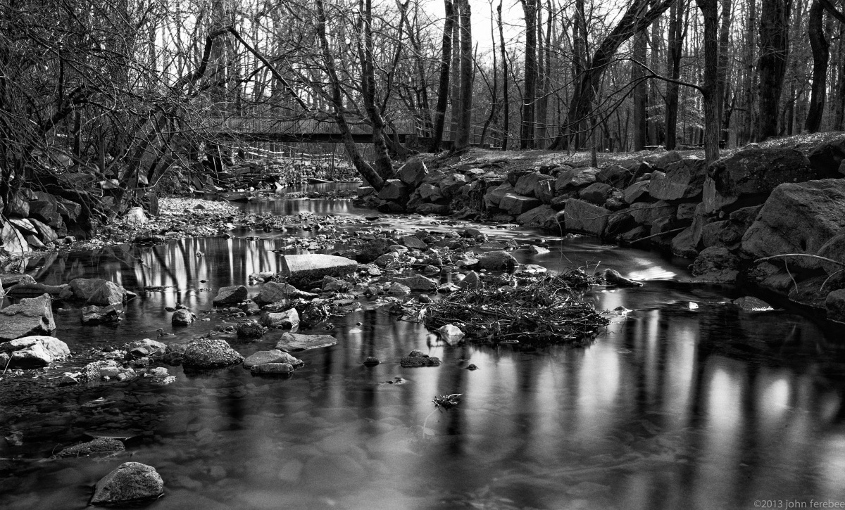 Four Mile Run Creek, VA (1 of 1)