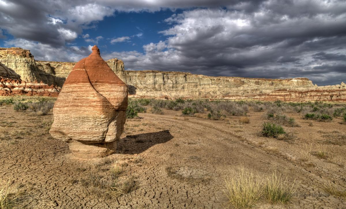Painted Desert Cenntenal
