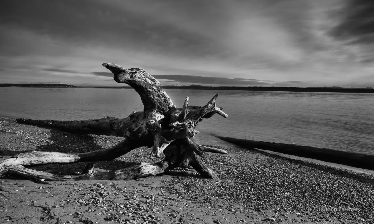 Bainbridge Island, WA